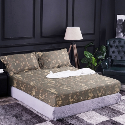 莫蘭卯靖100%帝王棉三件式床包組-加大