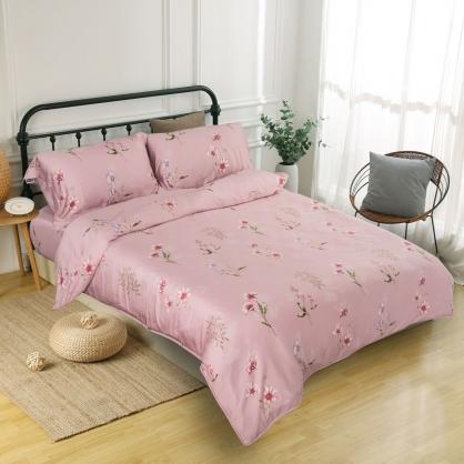波斯迷情60支紗天絲兩用被鋪棉床包組-加大