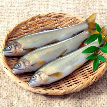 公香魚7P/盒  [E029]