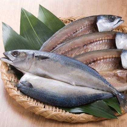 鯖魚剖半16P/尾 [E043]