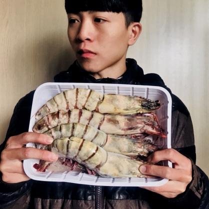 海草蝦5P(1KG)/盒 [C068]
