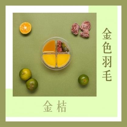【金色羽毛】金桔配方膠囊